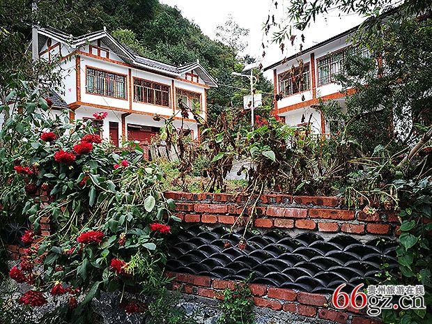 小菁美丽农家小院-百里杜鹃景区开启四季全域旅游