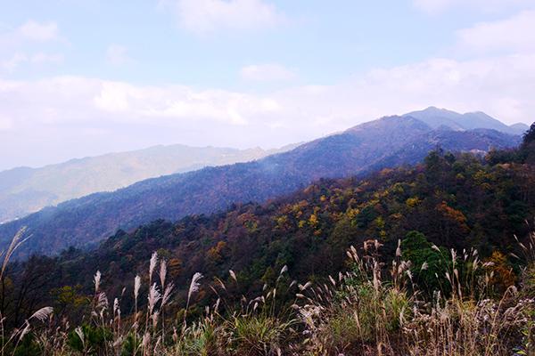 →金红阳→交东村→南宫乡