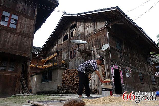 拥有鼓楼的苗寨--九摆   9月26日下午时间,采风成员们来到了贵州省为数不多的拥有鼓楼的苗寨九摆。   村子依山傍水,四面青山环绕,周围古松香樟环绕。一幢幢具有清代建筑风格的木结构吊脚楼依山而建,鳞次栉比。九摆民风古朴、典雅,以制作银饰工艺独特精湛而久负盛名。2013年入选第二批中国传统村落名录。   在九摆,采风成员们看到了最负盛名的九摆鼓楼。鼓楼坐落在以鹅卵石铺的跺鼓坪上,鼓楼为三重檐歇山顶屋面,木结构建筑,覆盖小青瓦,其下层呈平面四方形,空间宽敞。整个建筑结构以中间独柱为中心,周