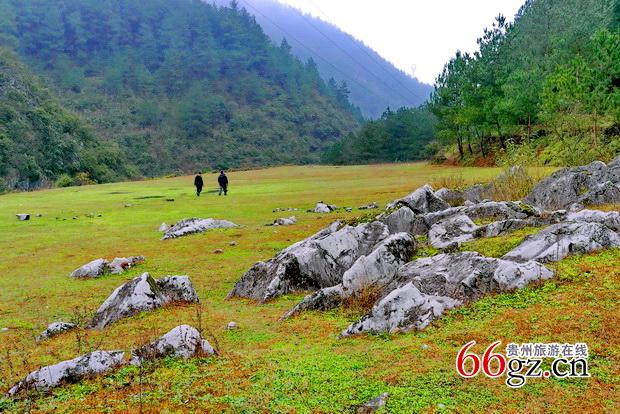 随拍:福建霞浦杨梅岭森林公园图片