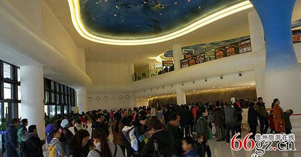 贵阳多彩贵州城极地海洋世界推出为海豚取名门票优惠活动;遵义桐梓