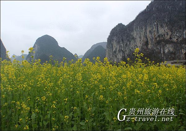 是贵州龙宫风景区